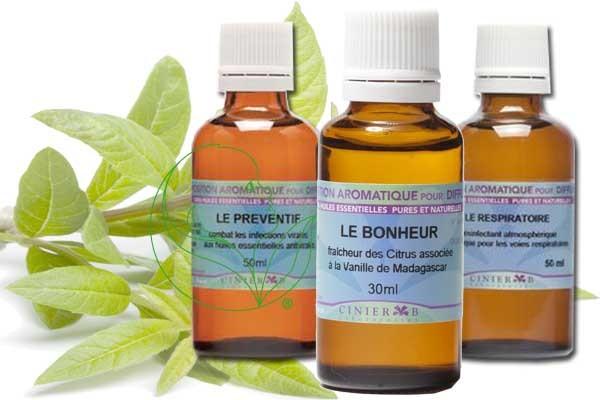 Compositions d'huiles essentielles