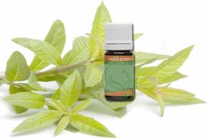 huile-essentielle-cardamome-semence-bio-cinier-b