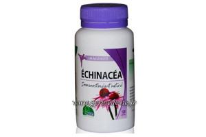 Echinacéa
