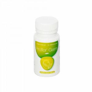 Proflor' Germ 60 gélules -probiotiques- Le Germe de Vie