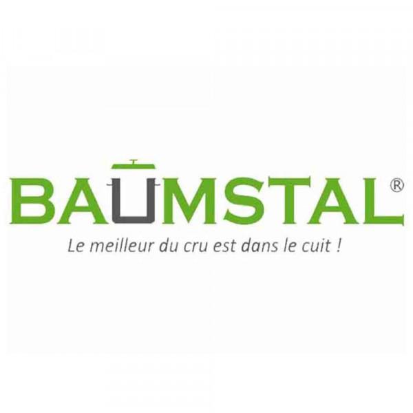 logo-baumstal