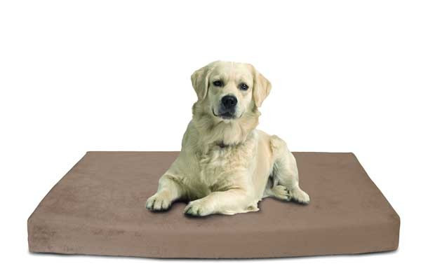 coussin-doggy-mag-magnetique