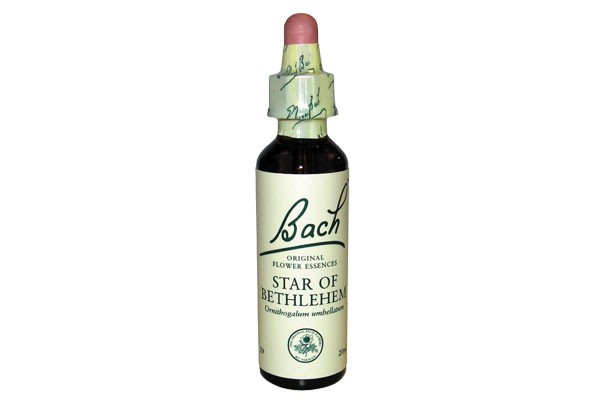 star-of-bethlehem-20-ml-fleur-de-bach