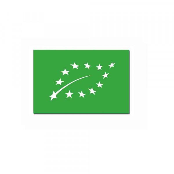 logo-europeen