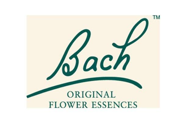 logo-bach-original