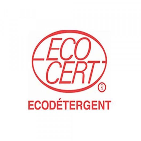 logo-ecodetergent