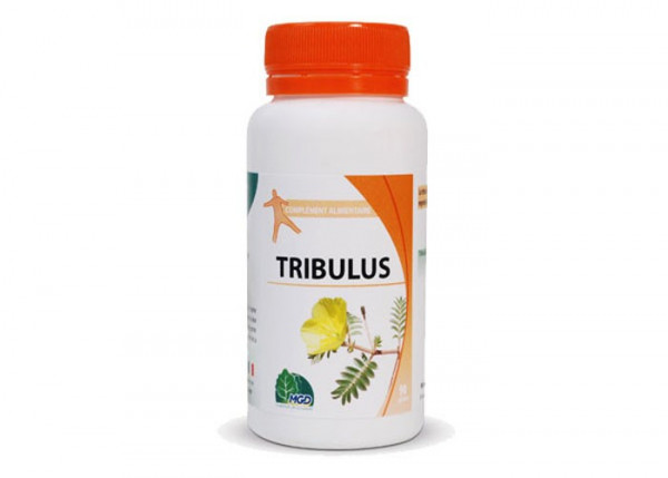 tribulus-terrestris-mgd