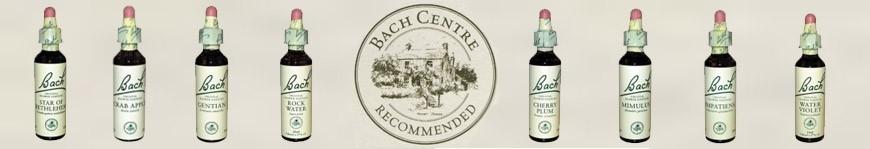 Qu'est-ce que les Fleurs de Bach ?